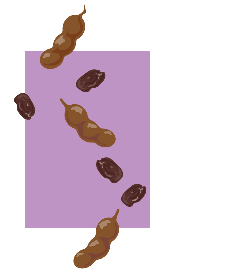 Chaat yogurt tamarind and date ingredients illustration