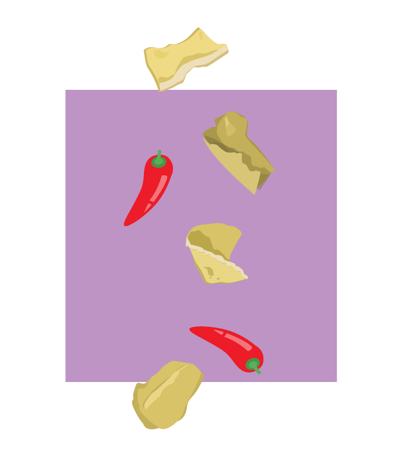 New Delhi Nachos Illustration